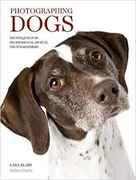 Image result for amherst media book on dog photography